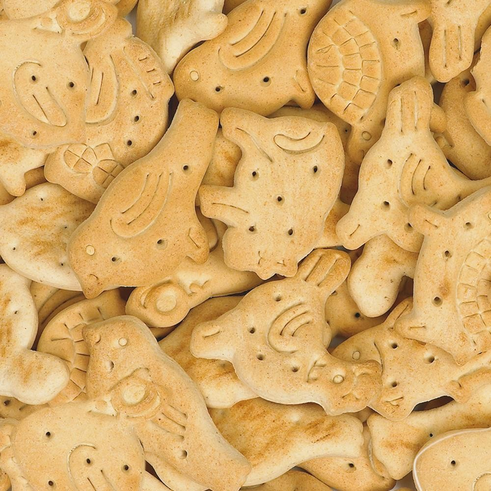 Biscuit Naturel Vanille 10 kg
