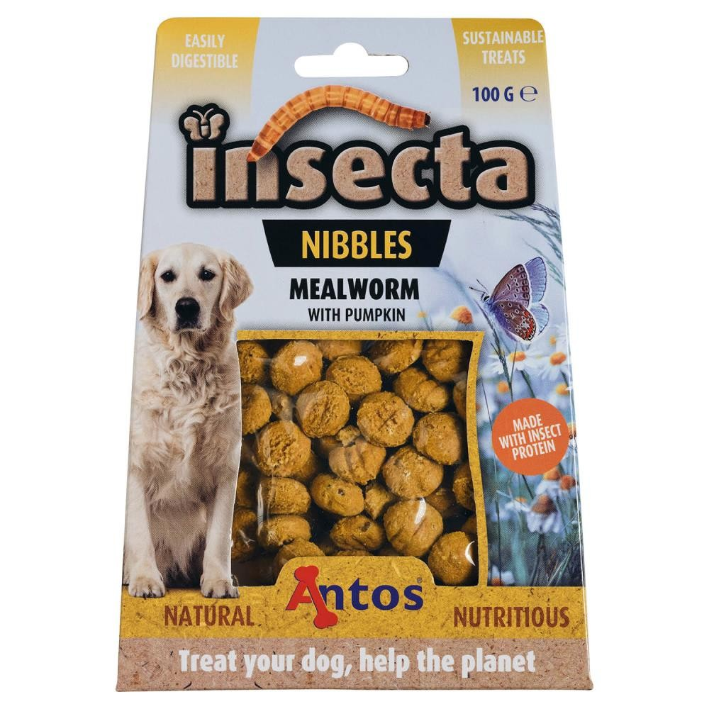 Insecta Nibbles Meelworm & Pompoen 100 gr